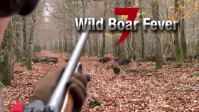 VIDEO: Wild boar fever 7